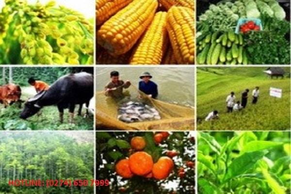 Điều kiện kinh doanh cây trồng vật nuôi